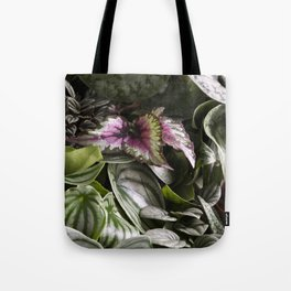 Moody Plants  |  The Houseplant Collection Tote Bag