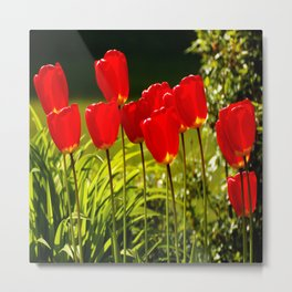 tulip impressions (square) Metal Print