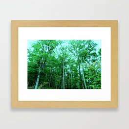North Face Framed Art Print