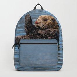 Sea_Otter I - Kachemak_Bay, Alaska Backpack