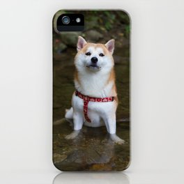KUMA: Shiba In River 1 iPhone Case