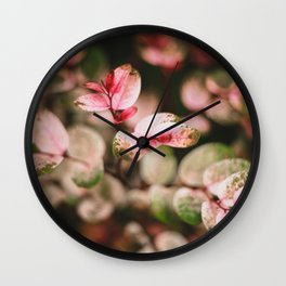 Perfectly spotted plant Wall Clock