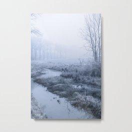 Winter Field Metal Print