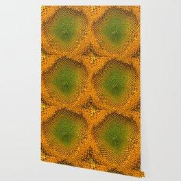 Sunny Flower Wallpaper