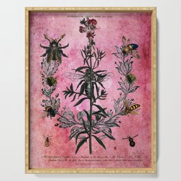 Vintage Bees with Toadflax Botanical illustration collage Serving Tray