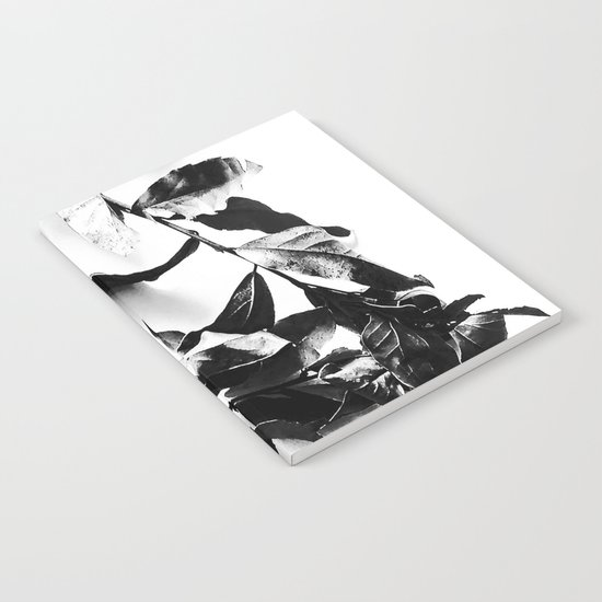 Bay leaves 4 Notebook