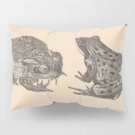 Naturalist Frogs Pillow Sham