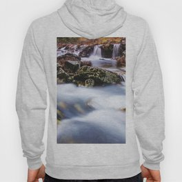 Deep in the woods there was a magic river Hoody