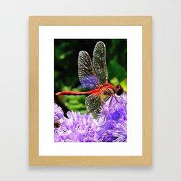 Red Dragonfly on Violet Purple Flowers Framed Art Print