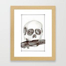 Tell No Tales Framed Art Print