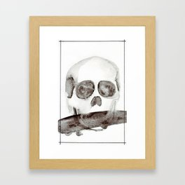 Tell No Tales Framed Art Print