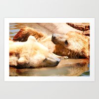 bears Art Prints featuring Bears by Sylvia C