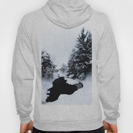 Snowy pond and trees disappearing in fog Hoody