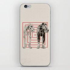 Concentric Lion Squares iPhone & iPod Skin
