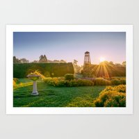 Early morning in the garden Art Print