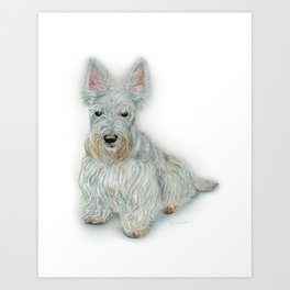 Wheaten Scottish Terrier Art Print