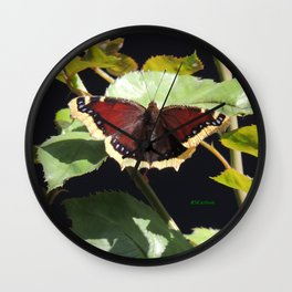 Mourning Cloak Butterfly at Rest on a Rose Leaf Wall Clock