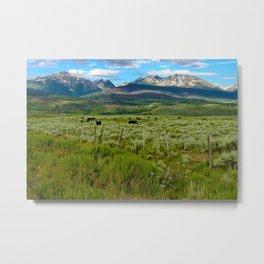 Colorado cattle ranch Metal Print