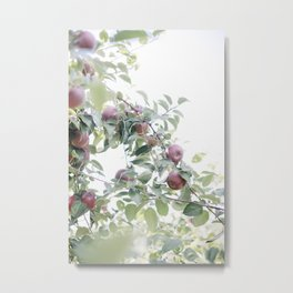 How About Them Apples Metal Print