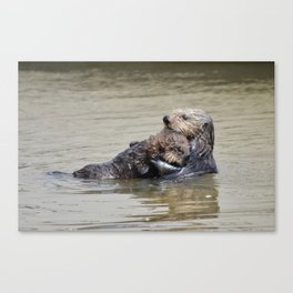 sea otter hug Canvas Print