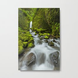 I - Remote waterfall in lush rainforest, Columbia River Gorge, Oregon, USA Metal Print