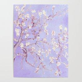 Vincent Van Gogh Almond Blossoms  Lavender Poster