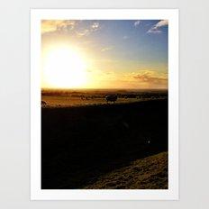 Sheep - The Hill of Tara Art Print
