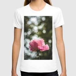 Pinkish Glory T-shirt