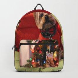 Dreo Christmas 2015 Backpack