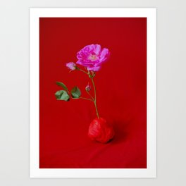 rose/red Art Print
