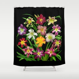 Display of daylilies II on blck Shower Curtain