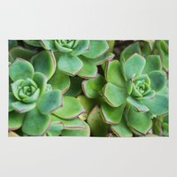 succulents Area & Throw Rugs featuring Succulents by Michelle McConnell