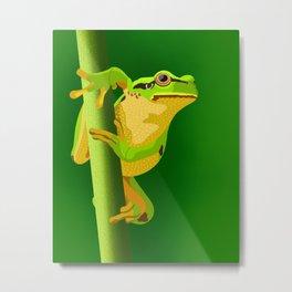 Bullfrog Metal Print