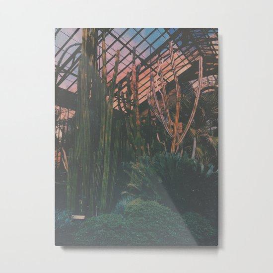 Cactus Life Metal Print
