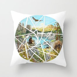Paha Sapa Vision Quest Throw Pillow