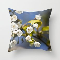 Spring is Near Throw Pillow