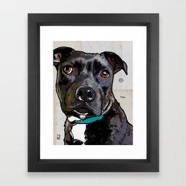 Dog: Staffordshire Bull Terrier Framed Art Print