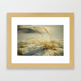 Sea Grass Framed Art Print