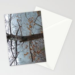 Tree trunk after a spring shower Stationery Cards