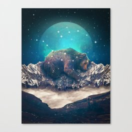 Under the Stars | Ursa Major Canvas Print