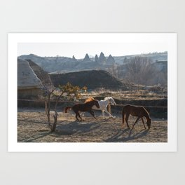 Land of horses Art Print