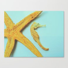My little bit of ocean Canvas Print