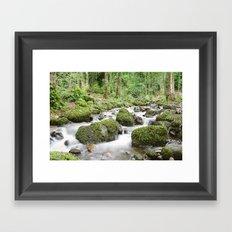 Windermere Creek Framed Art Print