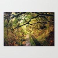 wonderland Canvas Prints featuring wonderLand by Dirk Wuestenhagen Imagery