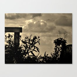 Playing In the Shadows Canvas Print