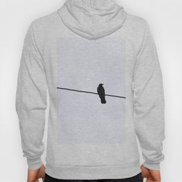 Raven // Norway Hoody