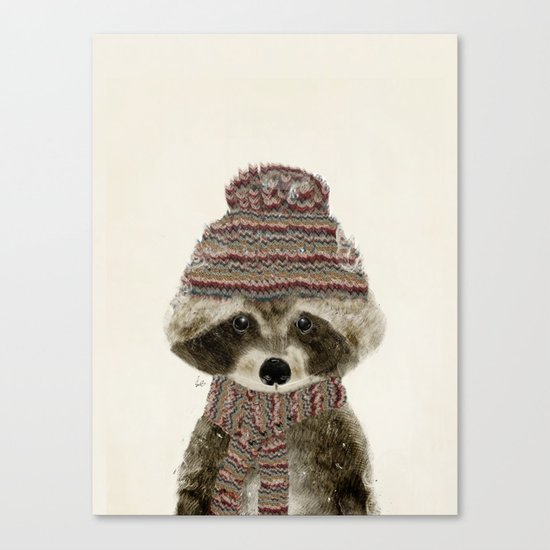 little indy raccoon Canvas Print