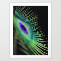 peacock feather Art Prints featuring Peacock feather by Falko Follert Art-FF77