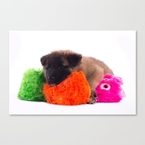 Puppy with colored toys Canvas Print