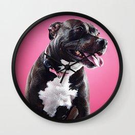 Super Pets Series 1 - Super Lucy Wall Clock